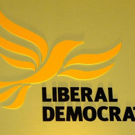 Who could be the next Lib Dem leader?