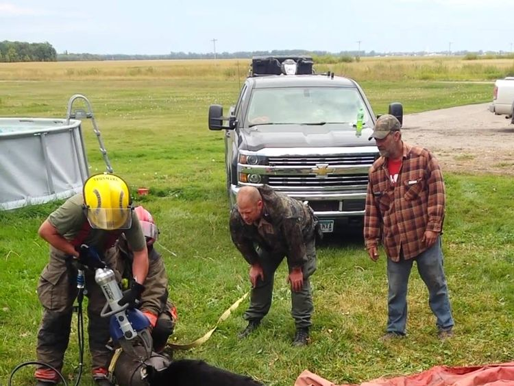 It took a couple of hours to free the bear. Pic: Minnesota Department of Natural Resources
