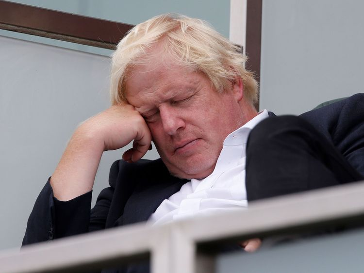 Boris Johnson was pictured relaxing at a Test cricket match between England and India