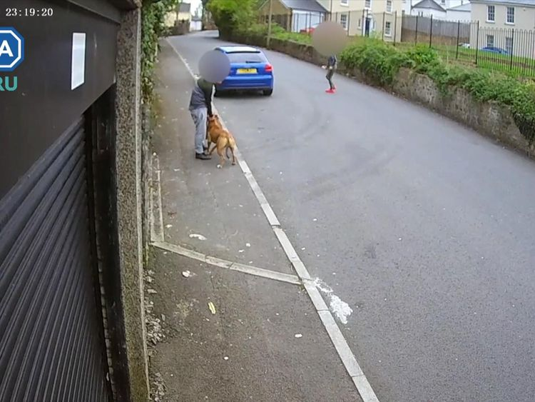One of the teenagers held the dog by its collar as the other lured the car out from under the vehicle