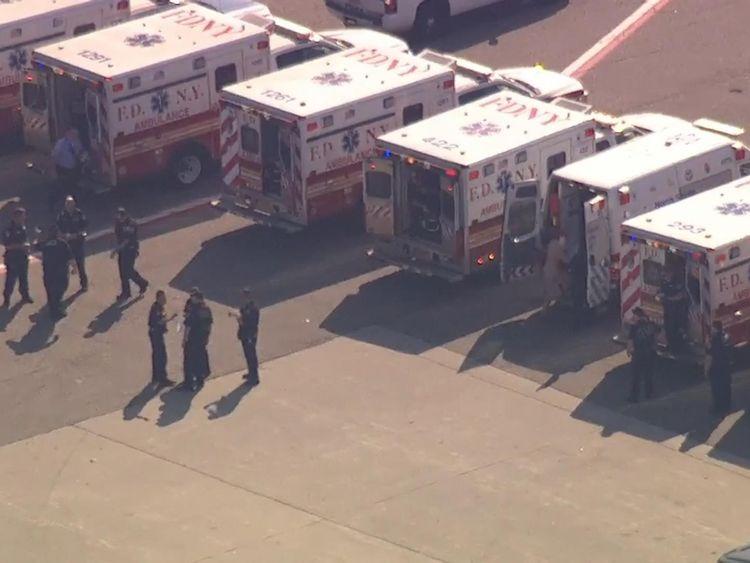 Dozens of ambulances met the aircraft