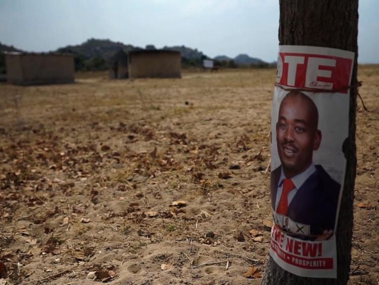 David acted as an election monitor and was an agent for the MDC