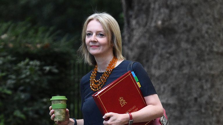 Chief Secretary to the Treasury, Liz Truss, arrives in Downing Street