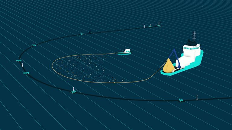 Ocean cleanup tech demo