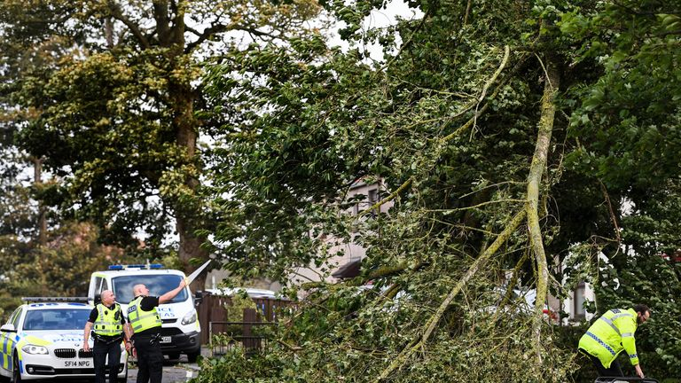 Strong winds brought trees down across the UK, including in Ardrossan in Scotland