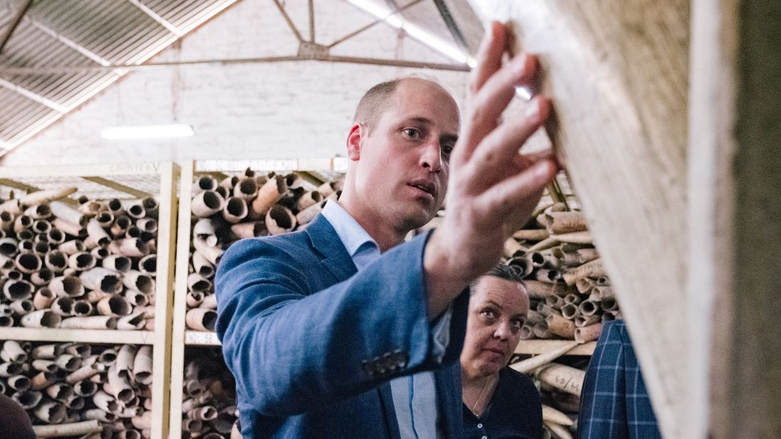 Prince William addresses poaching at Wildlife Conference