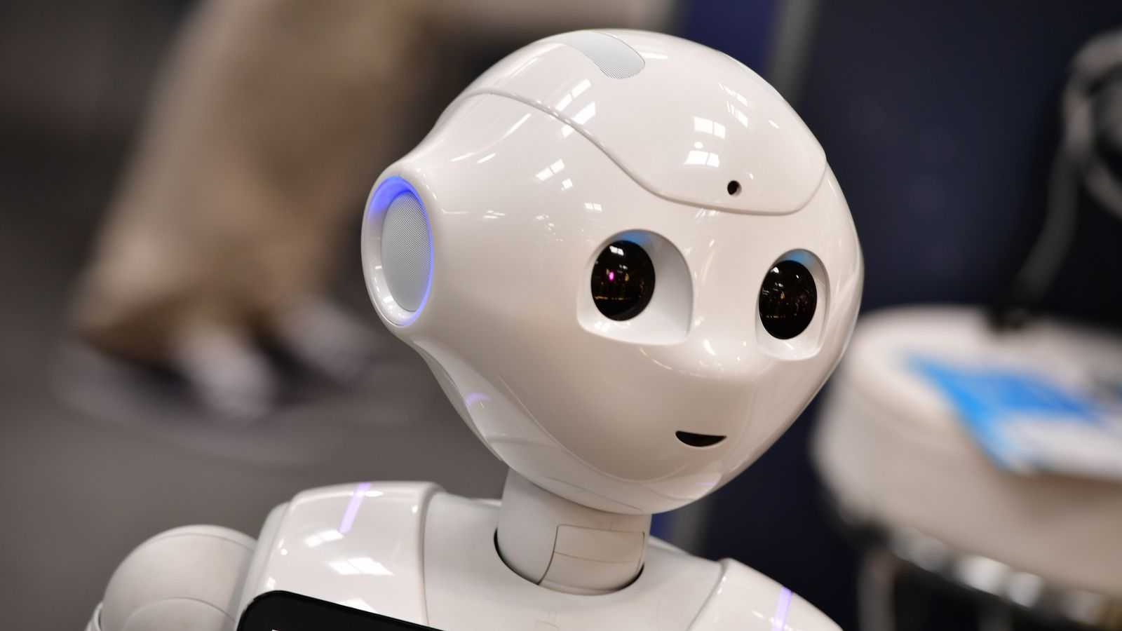 Robot to face questions from MPs for first time