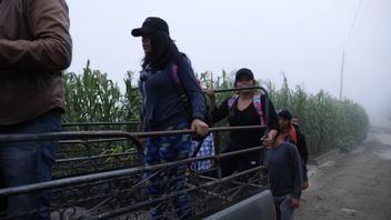 Women are smuggled across the Guatemala border.