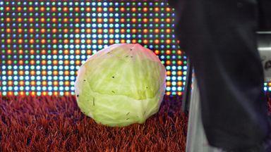 Cabbage found at Villa Park