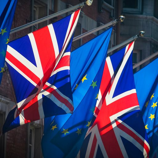 Majority of Brits now against Brexit and back second EU referendum - Sky Data poll