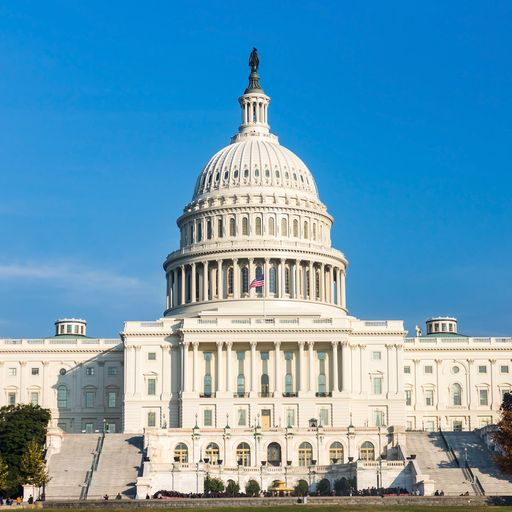 US midterms: Your ultimate guide