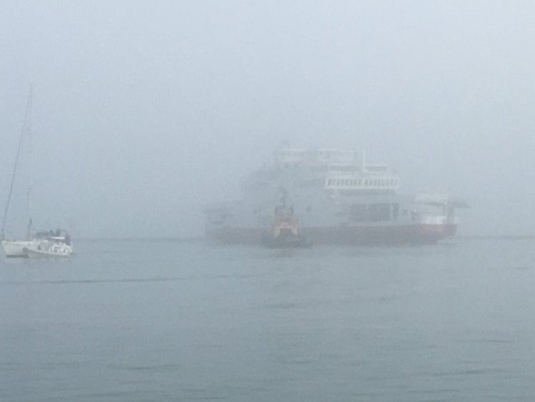 Lifeboats search waters off Isle of Wight after ferry collides with yachts