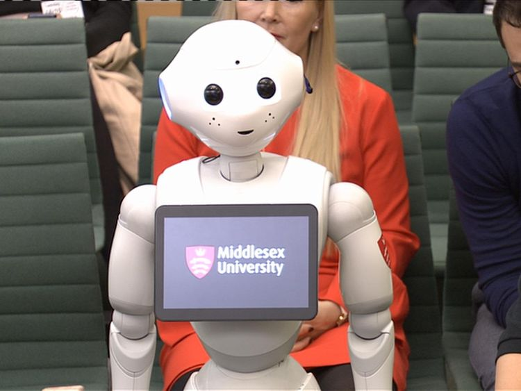 Pepper the robot questioned by MPs on AI