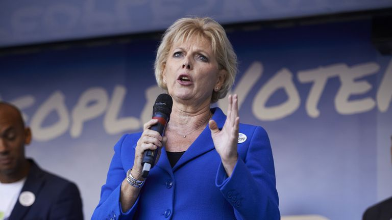 Anna Soubry said the campaign was 'winning the argument'