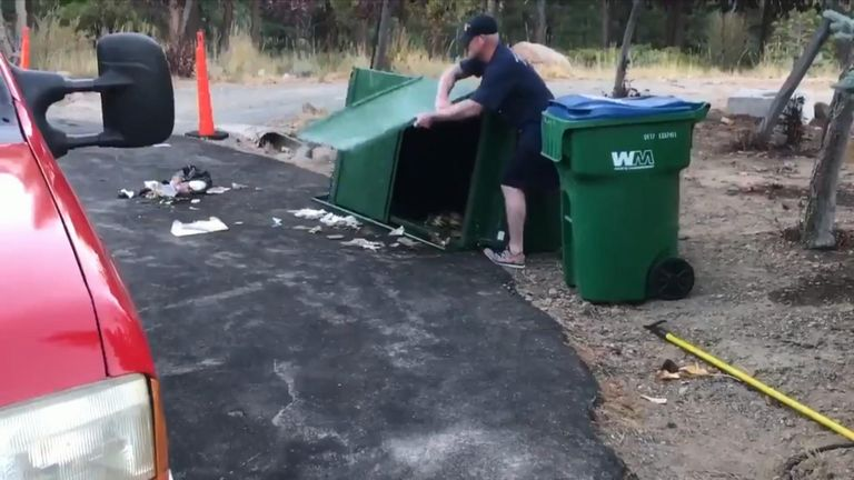 Firefighters had to distract a mother bear while freeing her cubs, who had somehow got trapped over night in a rubbish bin.