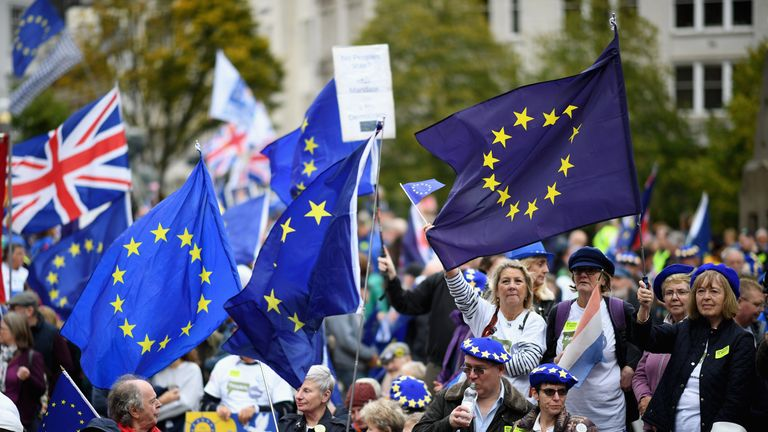 Protesters against Brexit at the Tory party conference