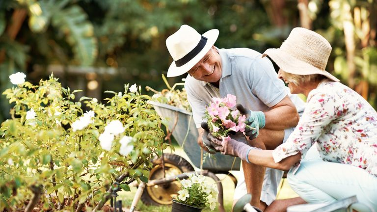 Doctors will be able to prescribe gardening to hel loneliness