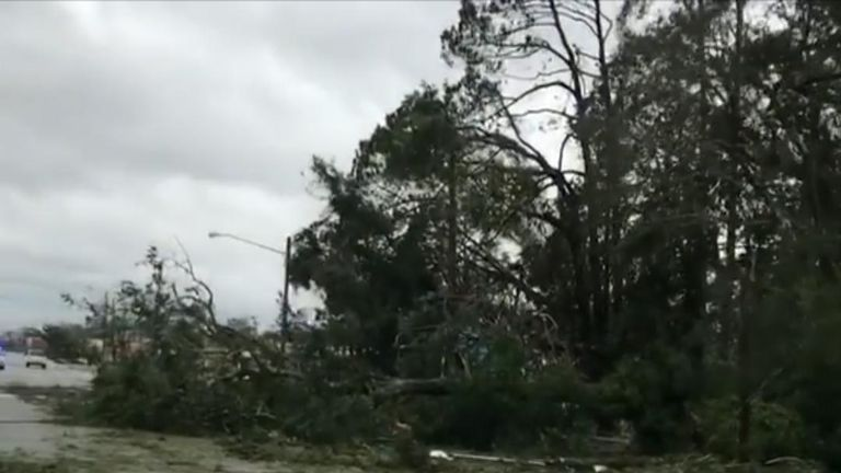 Trees and power lines down after Hurricane Michael came to Florida