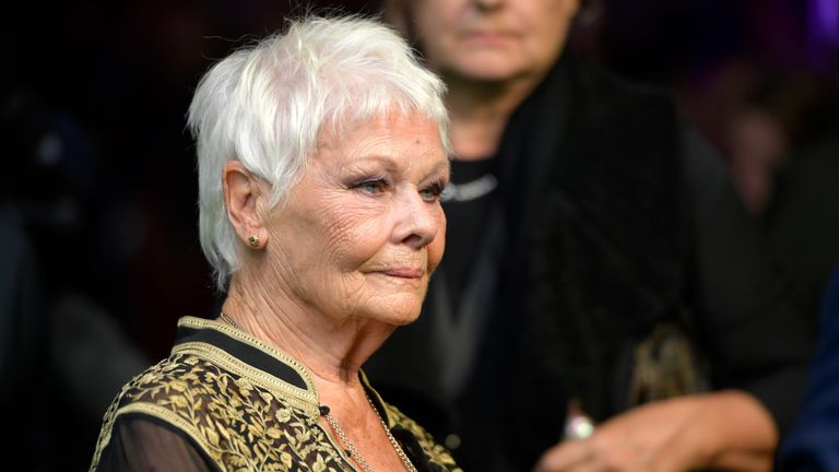 Judi Dench attends the Red Joan premiere and Golden Icon Award during the 14th Zurich Film Festival