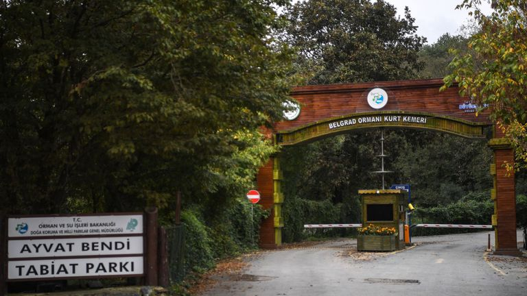 The vast Belgrad forest is being searched for remains