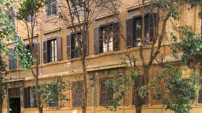 Rome's fallen tree