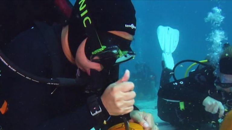 Halloween preparations get under way under the sea in Florida