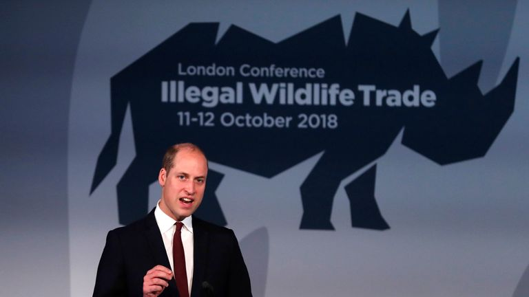 The Duke of Cambridge giving his keynote speech at the 2018 Illegal Wildlife Trade Conference, Battersea Evolution, London.
