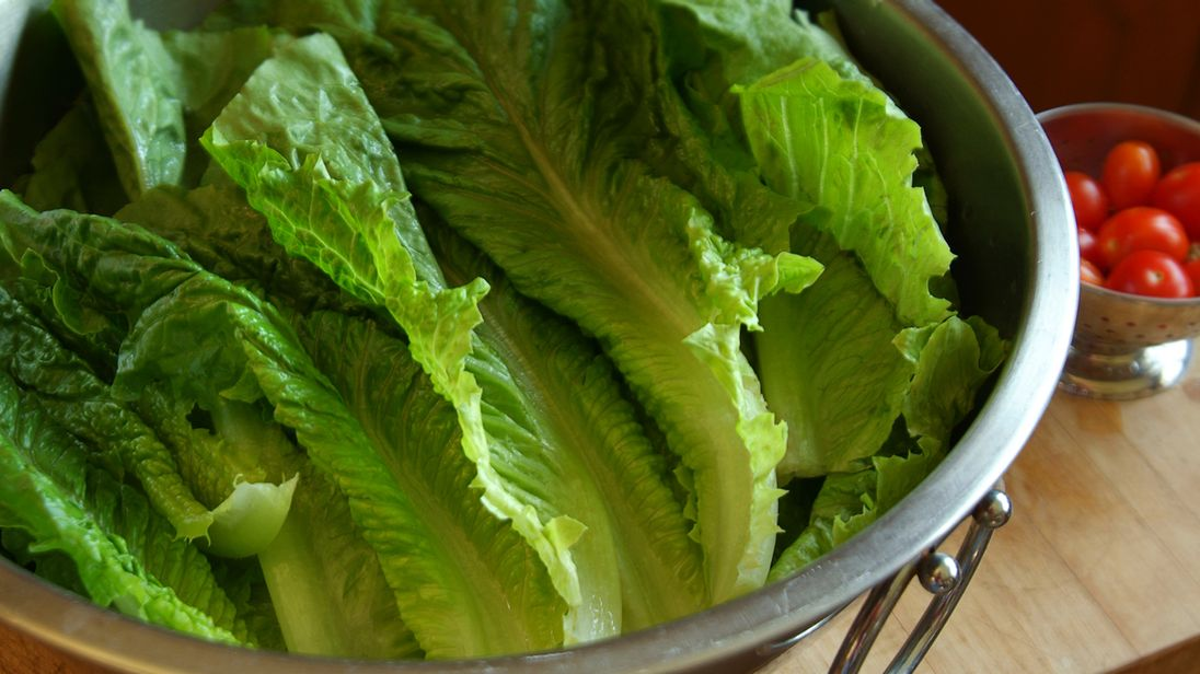 E. coli outbreak: Romaine lettuce probed in U.S. and Canada