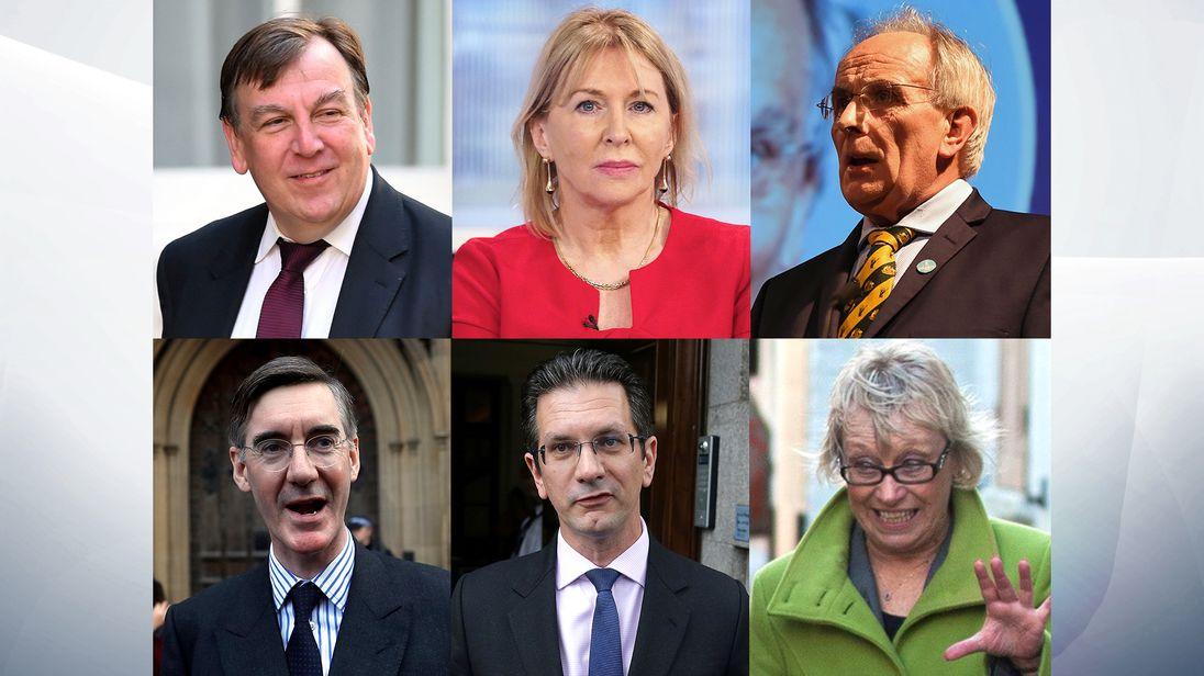 Clockwise from top left: John Whittingdale,Nadine Dorries, Peter Bone, Sheryll Murray, Steve Baker and Jacob Rees-Mogg