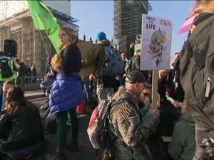 'Extinction Rebellion' protesters block London bridges over climate change call