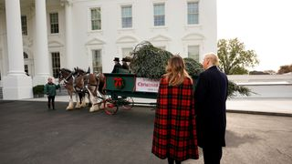 President Donald Trump and first lady Melania Trump receive the official White House Christmas tree at the North Portico of the White House in Washington, U.S., November 19, 2018.