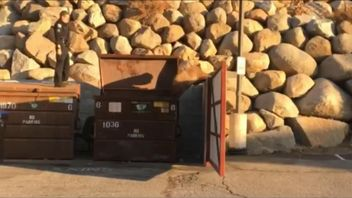 A sergeant with the Truckee Police Department helped to reunite a bear cub and its mother on November 16 after the cub became trapped in a dumpster.