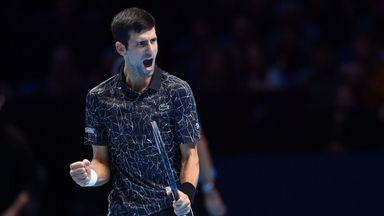 Djokovic vs Anderson: Highlights