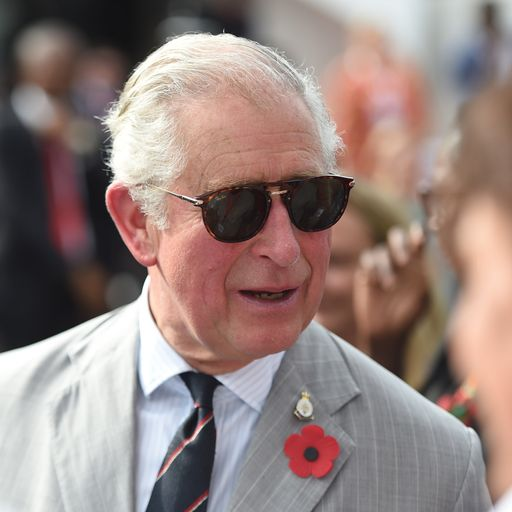 Why Charles has been accused of 'meddling'