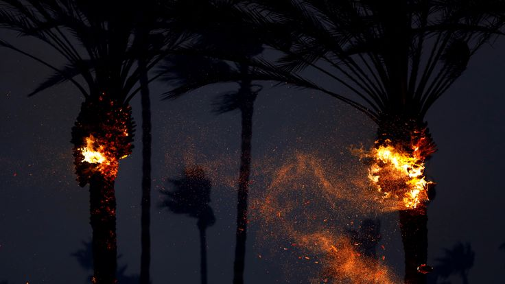 Palm trees catch fire as the Woolsey FIre burns in Malibu