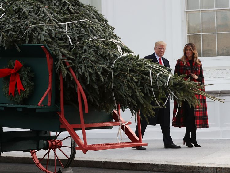 Donald Trump inspecting the White House's Christmas tree
