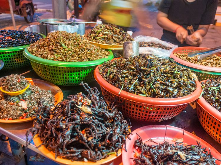 Fried insects, like these in Cambodia, are a popular food source in many parts of the world