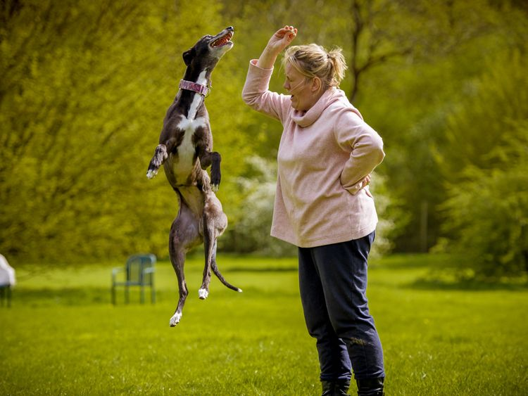 Jane Thompson was 'overwhelmed' by the smell in Hillside kennels. Pic: Kerry Jordan Whippets Snippets