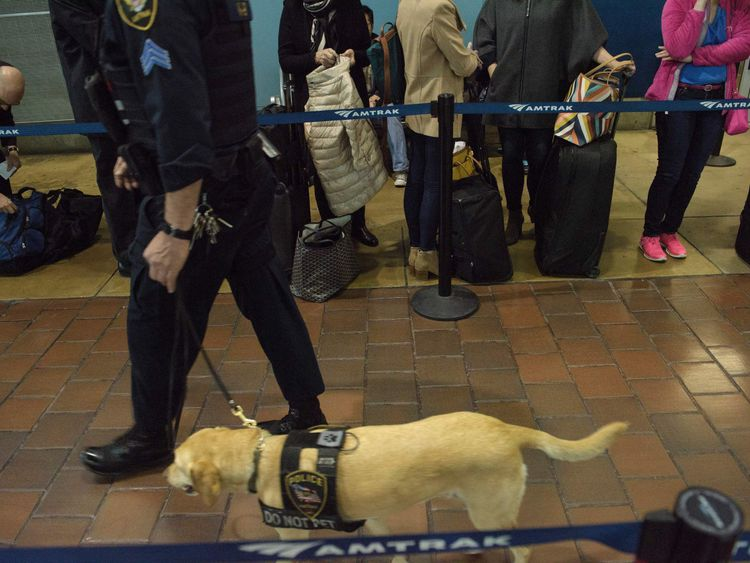 It costs nearly $10,000 (£7,790) to buy and train a police sniffer dog