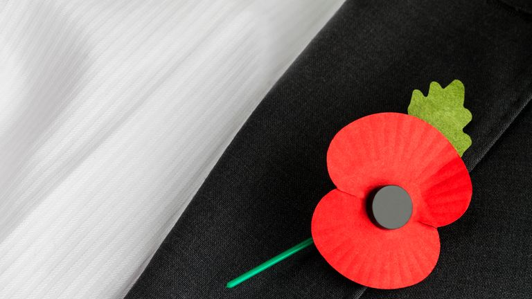 Poppies are not a common site in Ireland