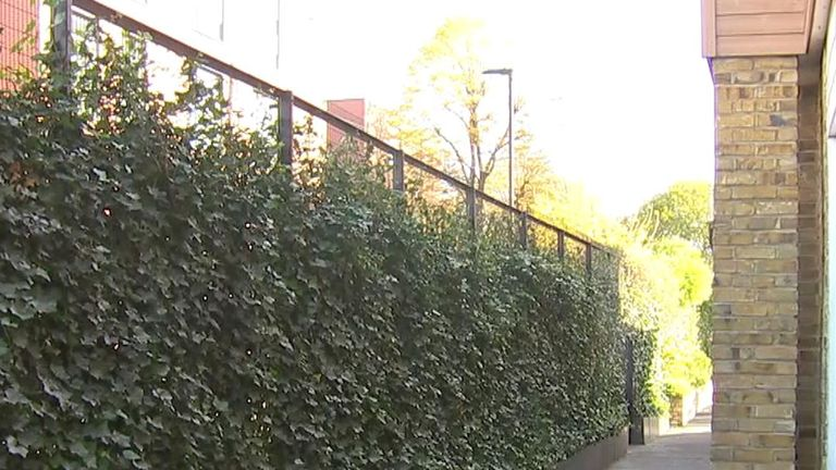 Two schools want to install the living walls