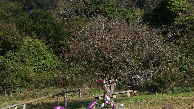 A memorial tree stands in Wild Park where the girls' bodies were found