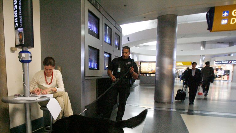 Sniffer dogs retire early in the US as drug dealers find