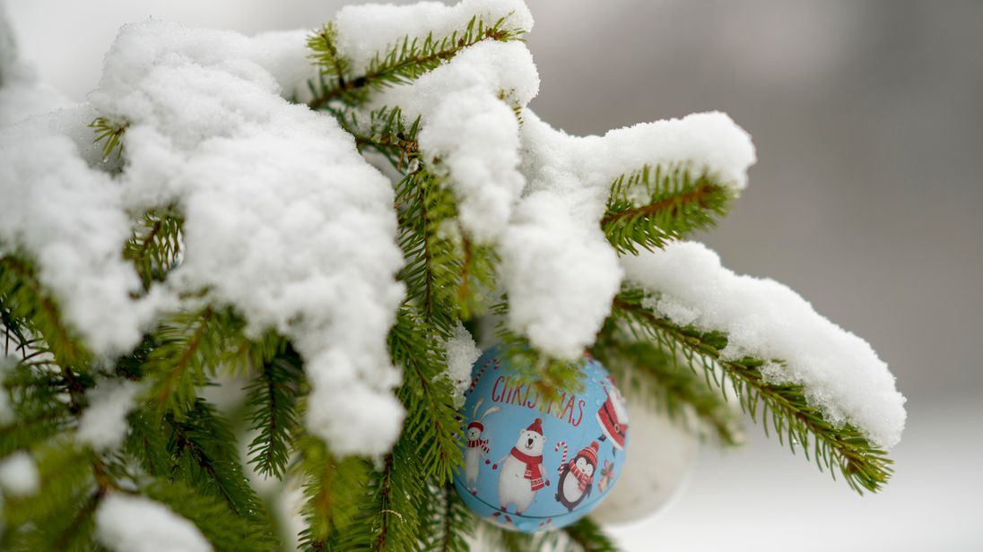 Snow settled on tress in Halifax after Christmas last year