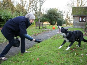 Theresa May throws a ball for a border collie called Blitz as she and her husband Philip leave following a church service near her Maidenhead constituency