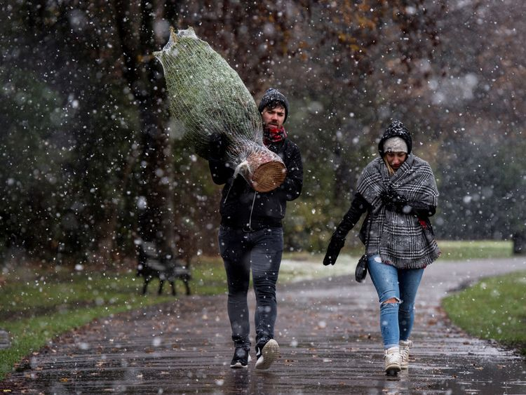 A man carries a Christmas tree during December snowfall in the UK in 2017