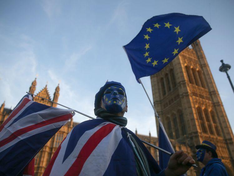 Pro-European Union demonstrators outside the Houses of Parliament