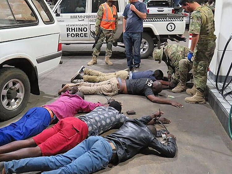Pangolin poachers are arrested