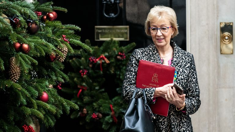 Andrea Leadsom is among those cabinet ministers in 10 Downing Street