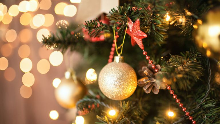 The mould spores found on christmas trees may cause asthma attacks